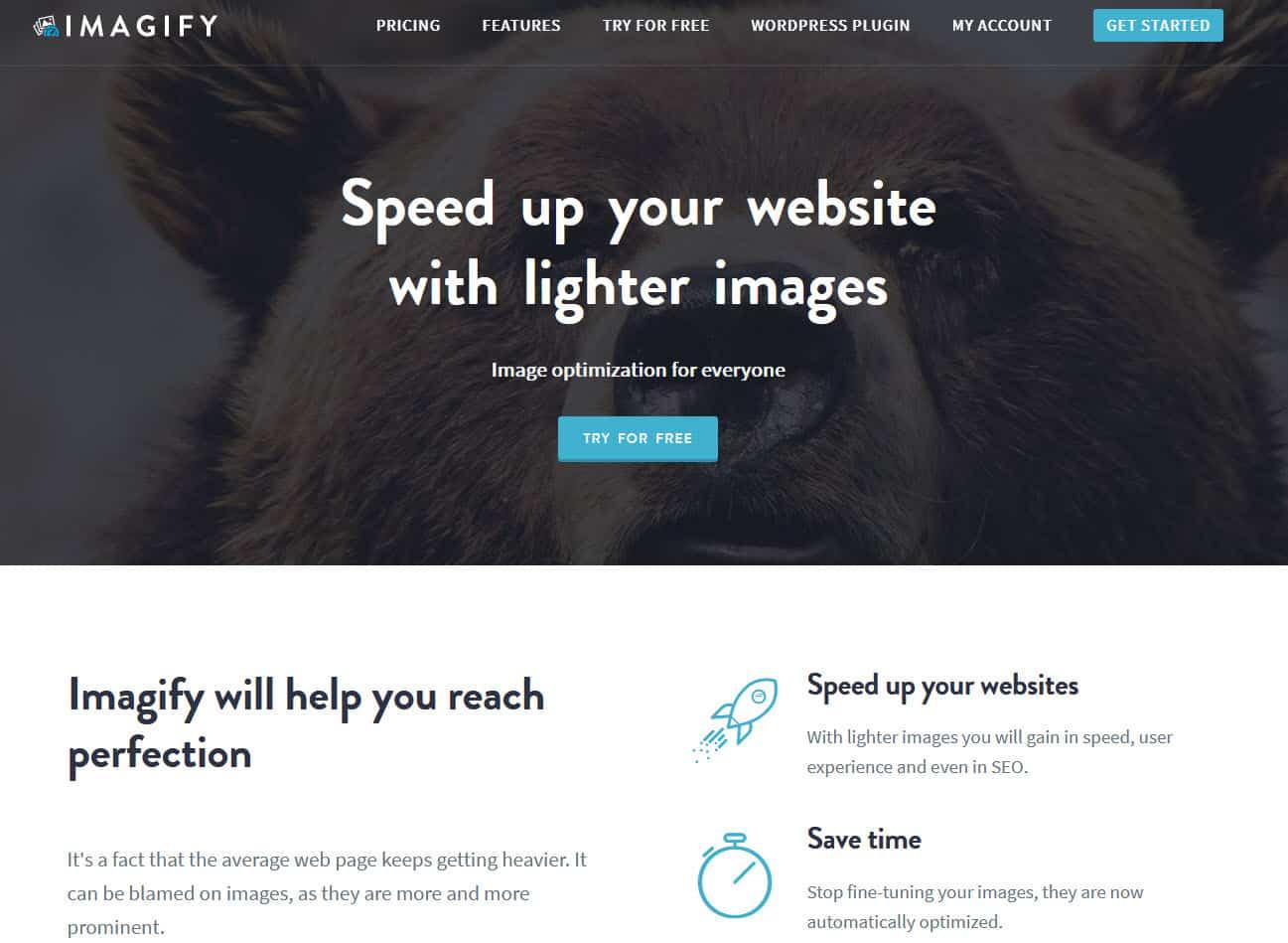 The Imagify plugin's homepage screenshot